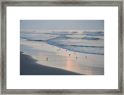 The Morning Surf Framed Print by Bill Cannon