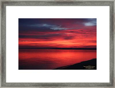 The Morning View 1 Framed Print
