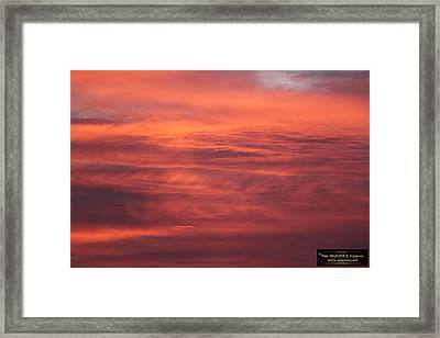 The Morning View 5 Framed Print