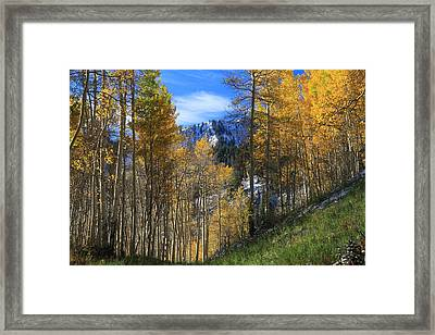 The Morning View Framed Print by Gene Praag