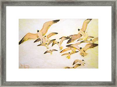 The Most Glorious Birds Framed Print by Ron Richard Baviello