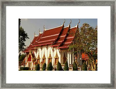The Most Important Of The 29 Buddhist Framed Print by Jaina Mishra