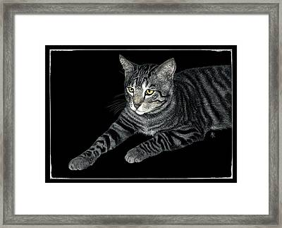 The Mouser Framed Print