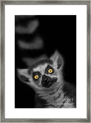 The Munch Framed Print by Ashley Vincent
