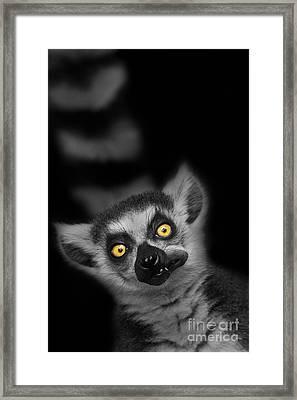 The Munch Framed Print