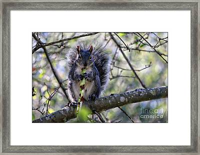 The Musician Framed Print