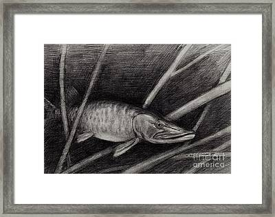The Musky Framed Print by Larry Green
