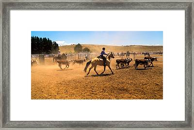The Muster Framed Print by Mark Lucey