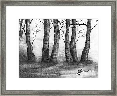 The Nature Of Trees Framed Print by J Ferwerda