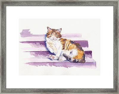 The Naughty Step Framed Print