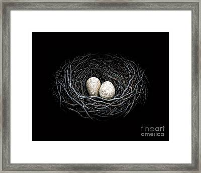 The Nest Framed Print by Edward Fielding