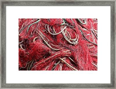 The Net Framed Print by Paul Indigo