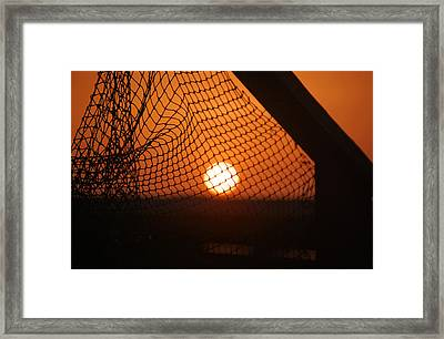 The Netted Sun Framed Print