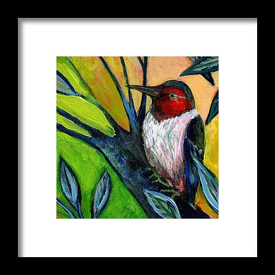 Woodpecker Framed Prints
