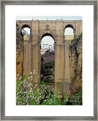 The New Bridge Framed Print
