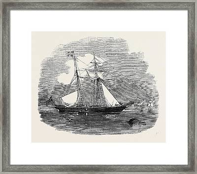 The New Opium Clipper Wild Dayrell Framed Print by English School