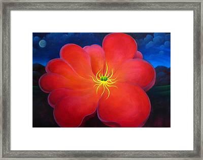 The Night Flower Framed Print by Richard Dennis