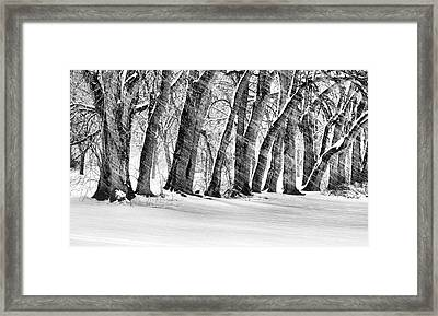 The Noreaster Bw Framed Print by JC Findley