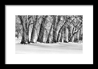 Designs Similar to The Noreaster Bw by JC Findley