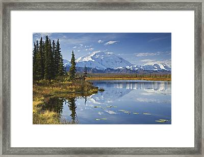 The North Face And Peak Of Mt. Mckinley Framed Print by John Delapp
