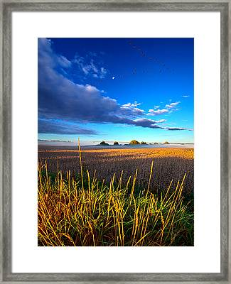 The Northern Winds Sing A Lullaby Framed Print