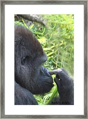 The Nose Picker Framed Print by Barbara Snyder