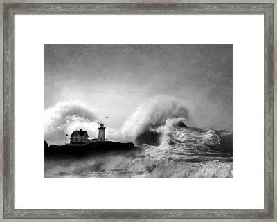 The Nubble In Trouble Framed Print by Lori Deiter