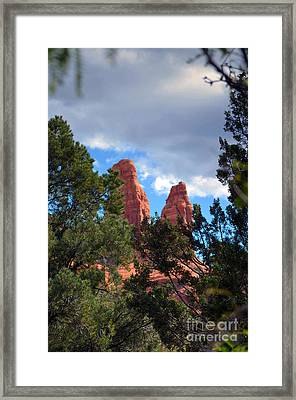 The Nuns Framed Print by Deb Halloran