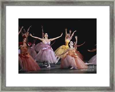 The Nutcracker Ballet Performance Framed Print by James L. Amos