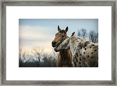 The Nuzzler Framed Print by Carey Dils
