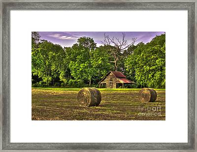 The Old Barn Round Bales Dead Oak Tree Framed Print