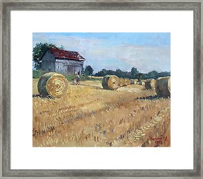 The Old Barns In Georgetown On Framed Print by Ylli Haruni