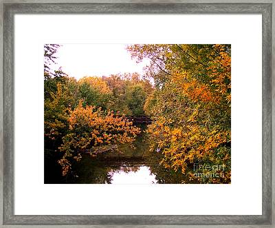 The Old Bridge Framed Print