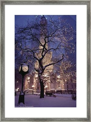 The Old Chicago Water Tower Framed Print