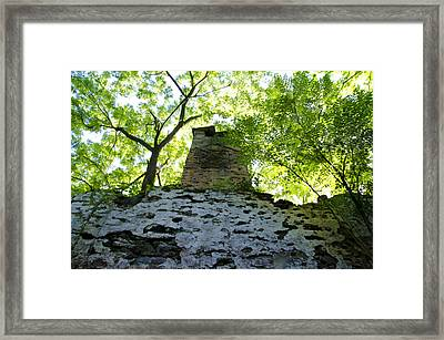The Old Chimney In The Woods Framed Print