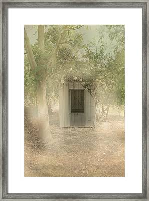 The Old Chook Shed Framed Print