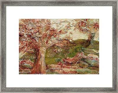 The Old Fence Line Framed Print by Mary Wolf
