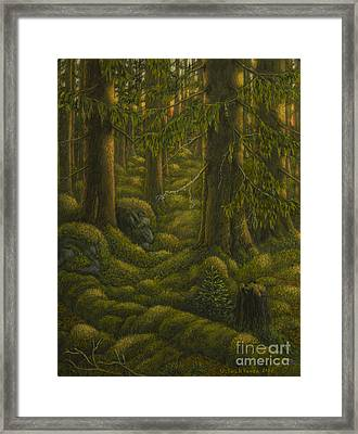 The Old Forest Framed Print by Veikko Suikkanen