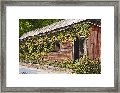 The Old General Store Framed Print by Darice Machel McGuire