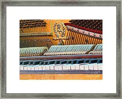 The Old Keys Framed Print