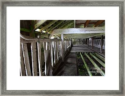 The Old Pierce Point Ranch At Point Reyes California 5d28128 Framed Print