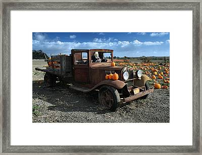 Framed Print featuring the photograph The Old Pumpkin Patch by Michael Gordon