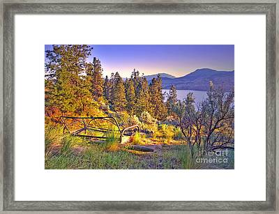 The Old Resting Place Framed Print by Tara Turner