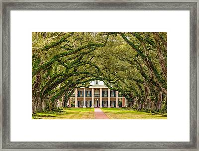 The Old South Version 2 Framed Print by Steve Harrington