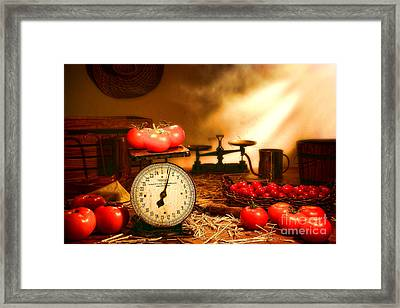 The Old Tomato Farm Stand Framed Print