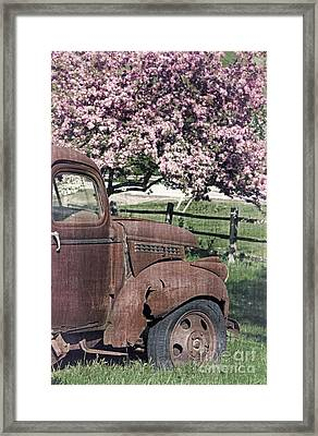 The Old Truck And The Crab Apple Framed Print by Edward Fielding