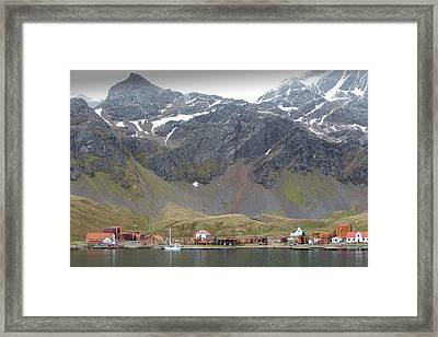 The Old Whaling Station At Grytviken Framed Print by Ashley Cooper