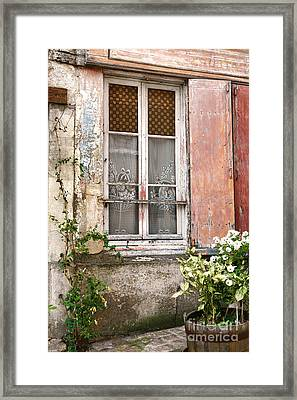 The Old Window With The Cats On The Curtains Framed Print by Olivier Le Queinec