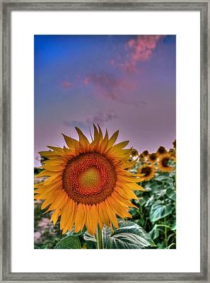 The One Framed Print by Eti Reid
