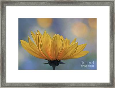 The One Who Dances With Light Framed Print by Maria Ismanah Schulze-Vorberg